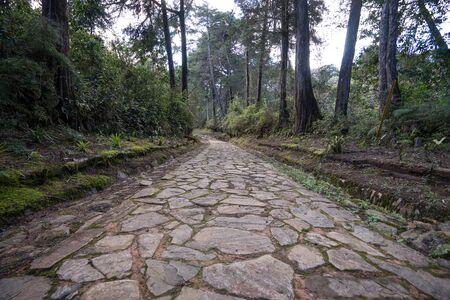 cobblestone path in Medellin area col