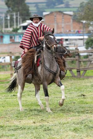 June 3, 2017 Machachi, Ecuador: cowboy wearing furry chaps and  traditional striped poncho on horseback