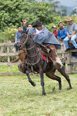 6月 3, 2017 Machachi, エクアドル: フィールドのカウボーイは、伝統的に馬に投げ縄を扱います 写真素材 - 87143440