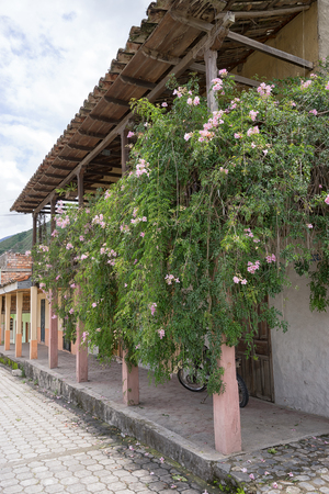 Vilcabamba, Ecuador: colonial architecture in the remote indigenous town known for longevity