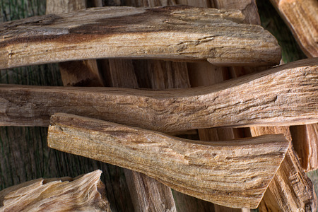 palo santo wood closeup in Ecuador