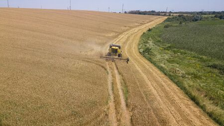 Harvesting of wheat in summer. Combine harvester agricultural machine collecting golden ripe wheat on the field. View from above.