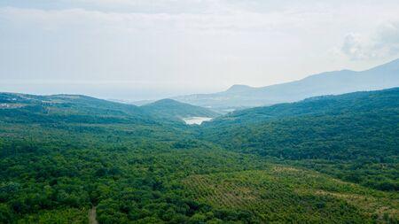 Beauty nature landscape Crimea with tree forest, roads, horizontal photo 版權商用圖片