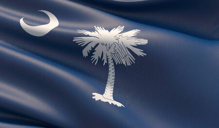 High resolution close-up Flag of South Carolina - United States of America states flags collection. 3D illustration. Фото со стока