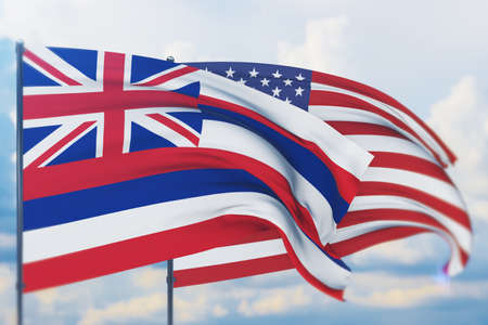 State of Hawaii flag. 3D illustration, flags of the U.S. states and territories