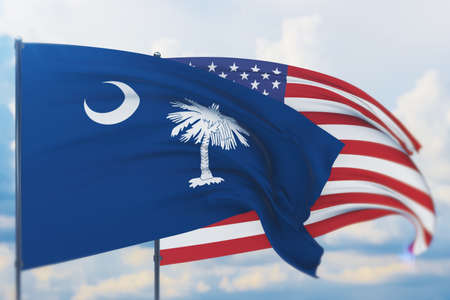 State of South Carolina flag. 3D illustration, flags of the U.S. states and territories 免版税图像