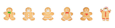 Set of christmas homemade gingerbread cookies on the white background.