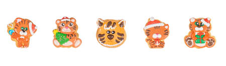 Set of new year homemade gingerbread cookies tiger on the white background.