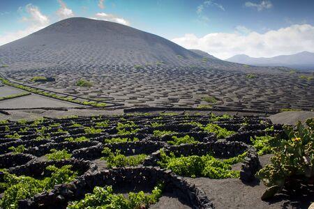 lanzarote: Lanzarote landscape Stock Photo
