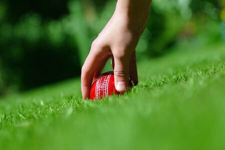 cricket ball on the grass photo