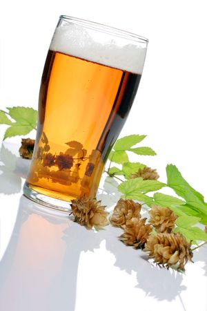 pint of beer, bitter, lager with hops for brewing Stock Photo