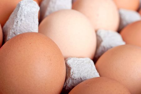 chucky: eggs in an egg box
