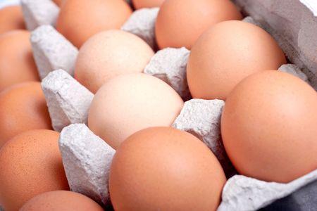 eggs in an egg box Stock Photo - 662943
