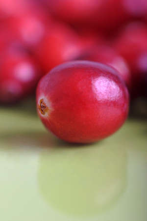 shallow: delicious cranberries ready for christmas,  shallow depth of field