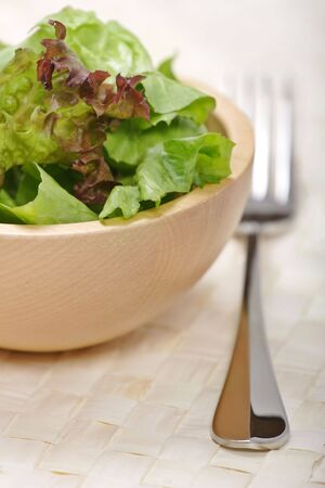 freshly prepared: freshly prepared mixed green salad Stock Photo