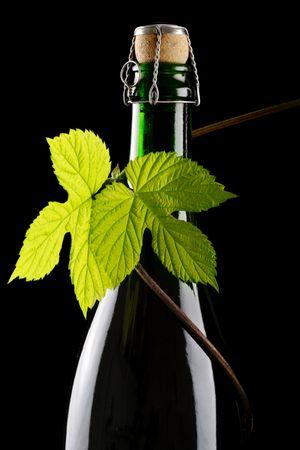 fresh hop leaf and beer bottle Stock Photo - 958077