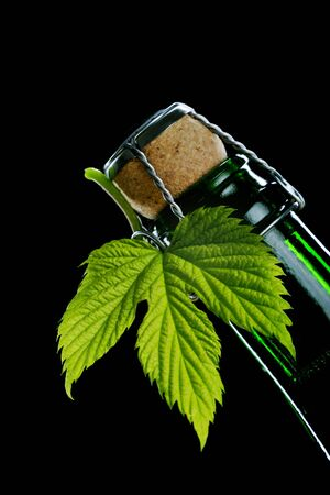 fresh hop leaf and beer bottle Stock Photo - 958078
