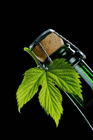fresh hop leaf and beer bottle Stock Photo - 958078