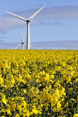 wind and arable farming,  yorkshire, England Stock Photo - 2006878
