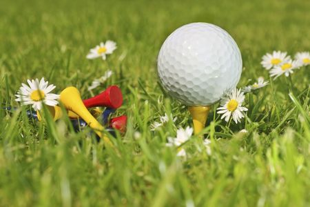 golf ball surrounded by daisies, summer recreation. photo