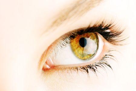 beautiful female hazel coloured eye photo