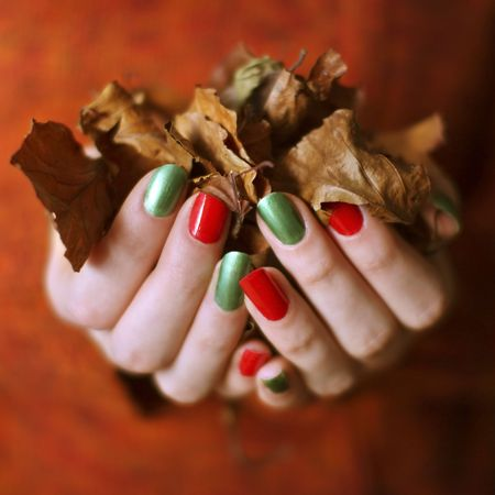 human fingernail: collecting leaves,
