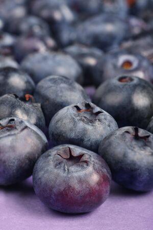 lots of plump ripe blueberries Imagens