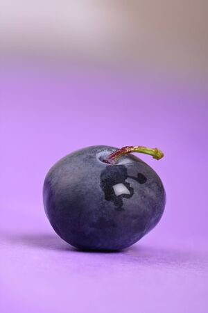 fresh deliciously plump ripe single blueberry  Imagens