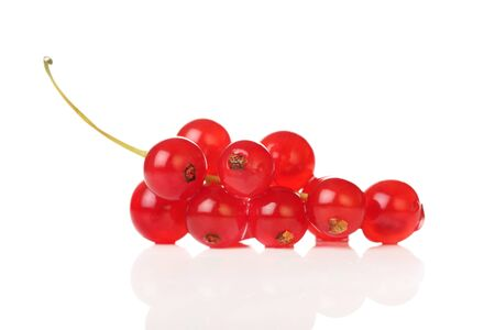 Freshly picked redcurrants isolated on a white background