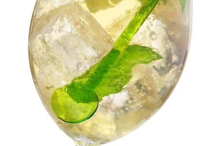 hugo: Hugo cocktail, made with elderberry, champagne, soda, lime and garnished with mint.