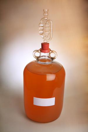 Peach wine in a demijohn with airlock in place due to wine still fermenting. Фото со стока