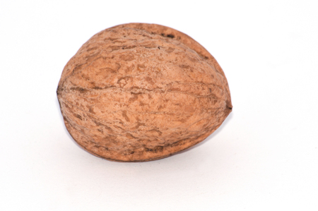 Walnut on a white background close-up macro side view, copy space for text Stock Photo - 121260945