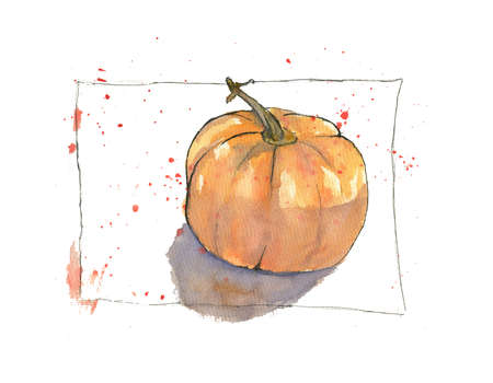 watercolor illustration of a pumpkin with color splashes