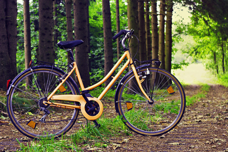 cycler: Orange bike on a path in the woods on a sunny summer day Stock Photo