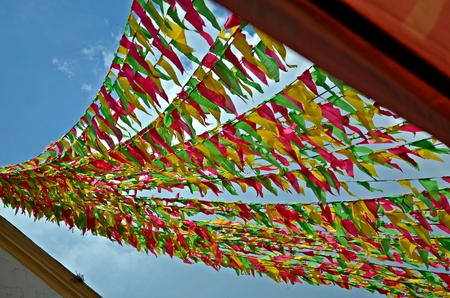 San Isidro Labrador Town Fiesta at Pulilan, Bulacan