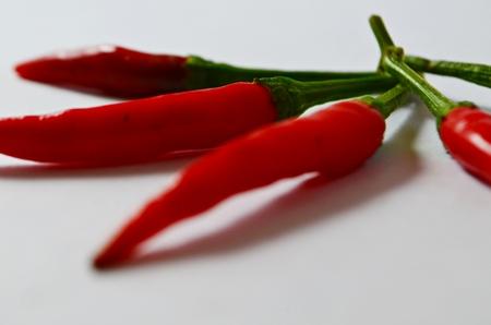 chili 4