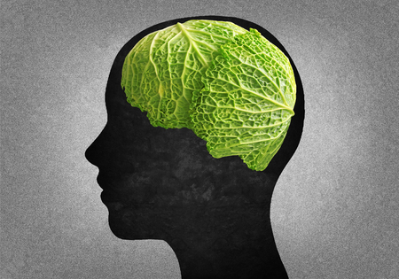 naturism: Silhouette of human head with a cabbage Instead of the brain