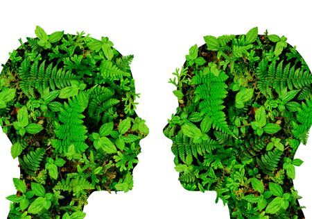 naturism: Silhouettes of human heads made of leaves and ferns forest