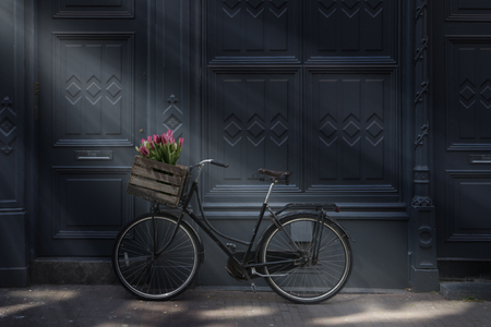 Bicycle with tulips in Amsterdam