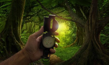 Hand with compass in the jungle 版權商用圖片