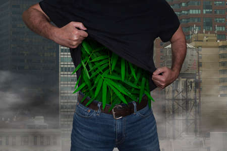 Man lifts his shirt and inside there are green leaves