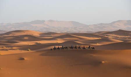 Sunrise in the desert with camel caravan Banco de Imagens