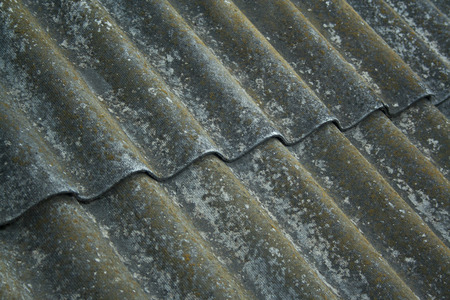 Old aged slate roof background. Rough slate with moss