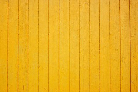Struttura gialla della parete di legno. Fondo di legno del grano. Posto per il testo. Trama per il design. Legno chiaro