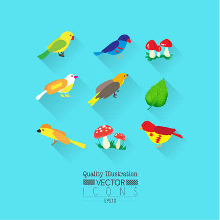 Colorful Bird Flat Vector Icon Set