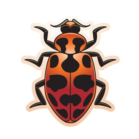 isolated black spotted ladybird Ilustracja