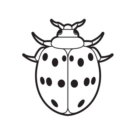 isolated black outline ladybird