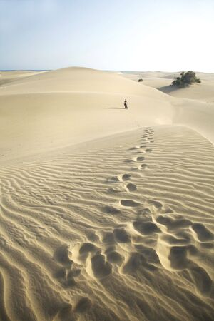 big dunes at maspalomas natural park in great canary spain photo
