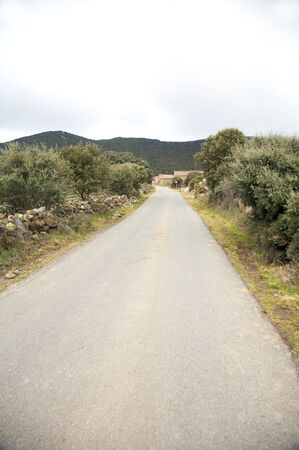 rural road at gredos mountains in avila spain photo