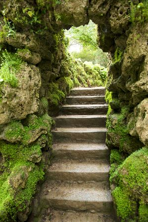 small stone stairs at a green garden in autumn photo